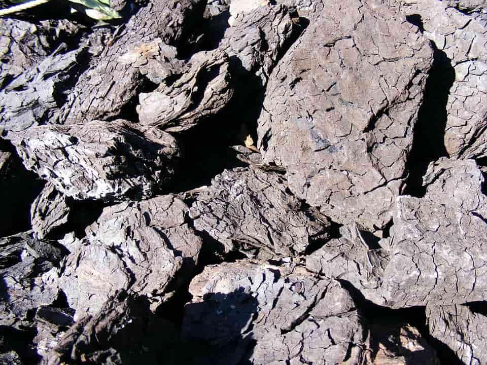 A fekete szén árak nem terhelik túlzottan a pénztárcát