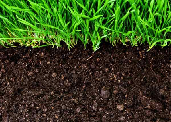 A termőföld a legértékesebb ömlesztett anyag